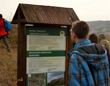 Acțiune de conștientizare – Fânațele Clujului